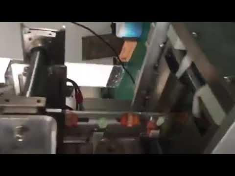Sacchetto di plastica Bustina di riempimento liquido di tenuta Imballatrice per bevande a base di latte Aceto di salsa di soia